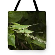 Grasshopper Mating On Grass Leaf Tote Bag