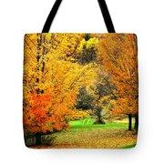 Grassy Autumn Road Tote Bag