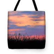 Grassy Sunset Tote Bag
