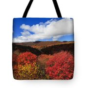 Graveyard Fields In The Mountains Tote Bag