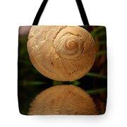 Gravity Shell Tote Bag