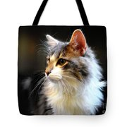Gray And White Cat Tote Bag