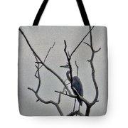 Gray Bird Tote Bag