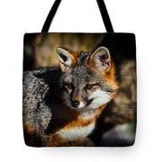 Gray Fox Tote Bag