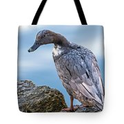 Gray Lady Tote Bag