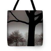 Gray Skies At Night Tote Bag