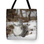 Gray Squirrel In Snow Tote Bag