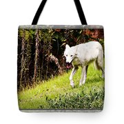 Gray Wolf 2 Tote Bag