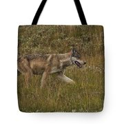 Gray Wolf Hunting Tote Bag
