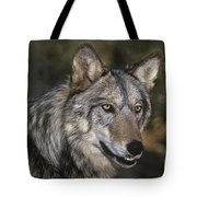 Gray Wolf Portrait Endangered Species Wildlife Rescue Tote Bag