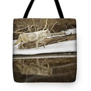 Gray Wolf Reflection Tote Bag