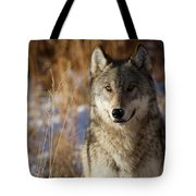 Gray Yearling Tote Bag