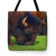 Grazing Buffaloes Tote Bag