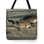 Grazing Geese Tote Bag