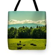 Grazing Holsteins Tote Bag