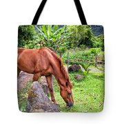 Grazing In Paradise Tote Bag