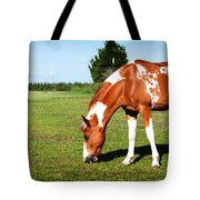 Grazing In Style Tote Bag