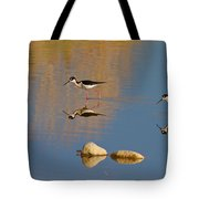 Grazing Stilts Tote Bag