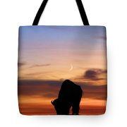 Grazing Under The Moon Tote Bag