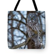 Great Beauty Tote Bag