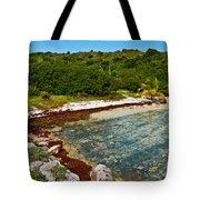 Great Bird Island Beach Tote Bag