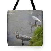 Great Blue And White Egrets Tote Bag