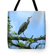 Great Blue Heron Afternoon Fishing  Tote Bag