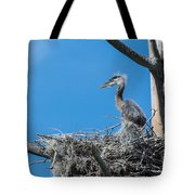 Great Blue Heron Chick Tote Bag