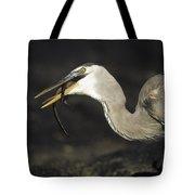 Great Blue Heron Eating Marine Iguana Tote Bag by Tui De Roy