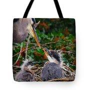 Great Blue Heron Family Tote Bag
