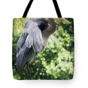 Great Blue Heron IIi Tote Bag