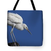 On Top Of The World... Pole Tote Bag