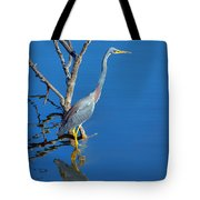 Tricolored Heron Tote Bag