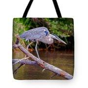 Great Blue Heron Oak Creek Canyon Sedona Arizona Tote Bag
