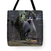 Great Blue Heron On The Clinch River Tote Bag