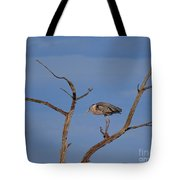 Great Blue Heron Perched On Branch Tote Bag