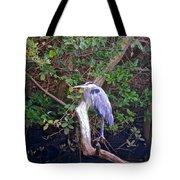 Great Blue Heron Resting Tote Bag