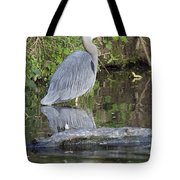 Great Blue Heron Standing In Water Tote Bag