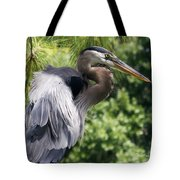 Great Blue Heron Vi Tote Bag