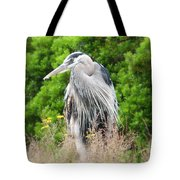 Great Blue Heron Watching And Waiting Tote Bag
