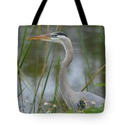 Great Blue In The Reeds Tote Bag