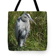 Great Blue Waiting For Prey Tote Bag