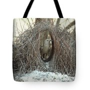 Great Bowerbird Male In Bower Australia Tote Bag