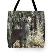 Great Buck Tote Bag
