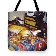 Great Dane And Cat Tote Bag