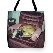 Great Dane Pup And Cat Tote Bag