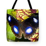 Great Eggfly Butterfly Tote Bag