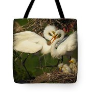 Great Egret 2am-7177 Tote Bag