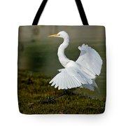 Great Egret Alighting Tote Bag