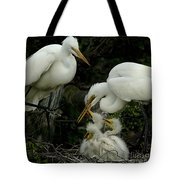 Great Egret Family 2 Tote Bag